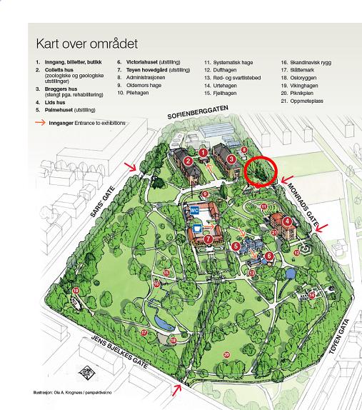 kart over tøyen Konkurranse om nytt klimahus på Tøyen   Naturhistorisk museum kart over tøyen