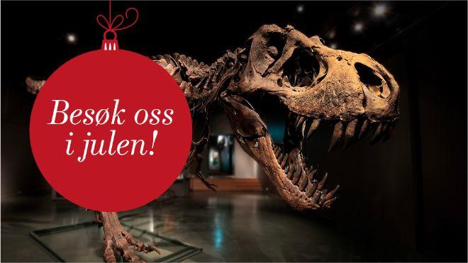 kan karbon dating brukes på dinosaur bein