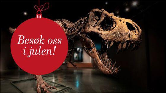 Bildet kan inneholde: dinosaur, kjeve, tyrannosaurus, velociraptor, utryddelse.