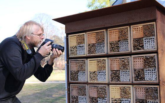Mann med kamera studerer insekthotell.